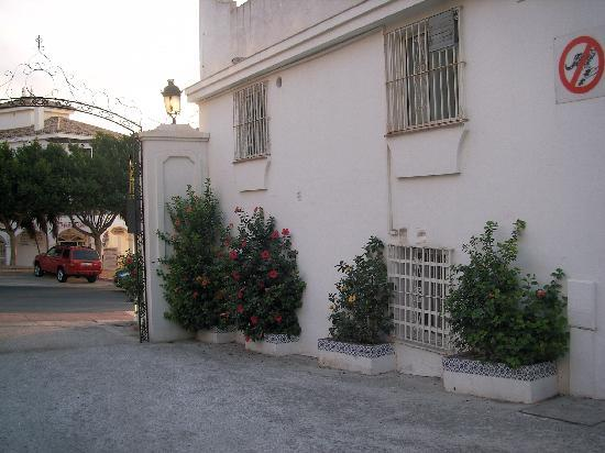 Aparthotel Sunny Beach: Entrance flowers.