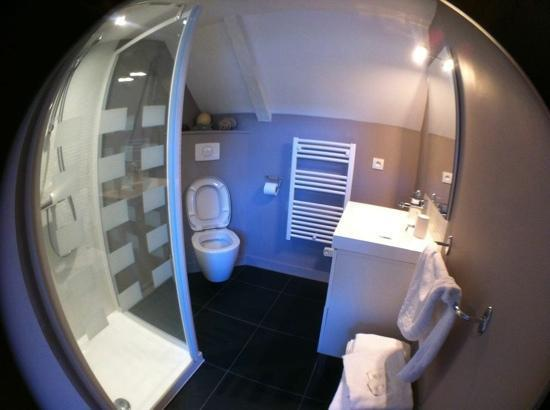 La Haute Flourie: private shower.. very newly renovated