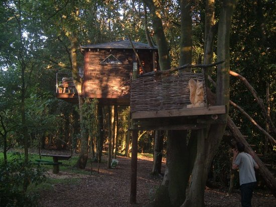 Chorleywood, UK: Tree House