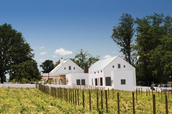 Klein Welmoed Luxury Guest House: Breathtaking views of vineyards