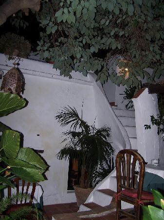 Hostal El Anon: Cosy leafy restaurant