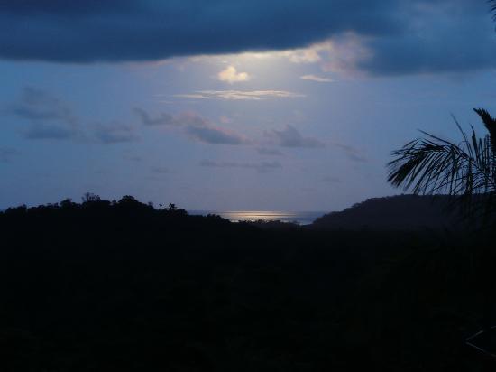 Coral Sea Views: Blue Moon....