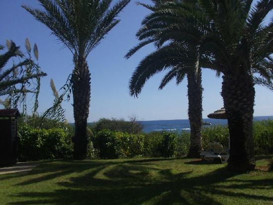 Alion Beach Hotel: gardens