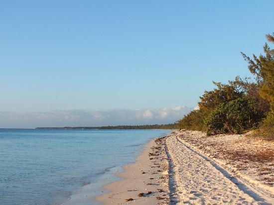 Gite Beaupre : plage devant le gîte
