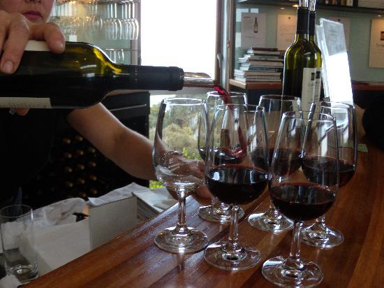 Te Whau Vineyard: Enjoy the wine tastings