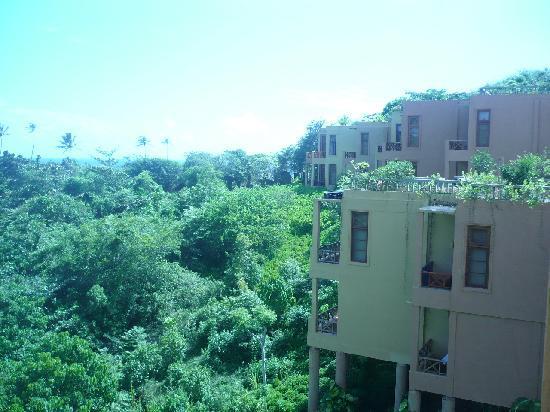 Barberyn Beach Ayurveda Resort: esta vista es desde la habitación
