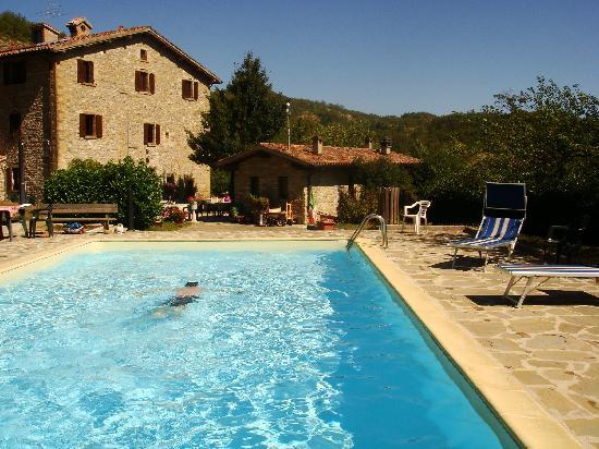 La Tavola Marche Agriturismo & Cooking School: Relaxing in the Pool