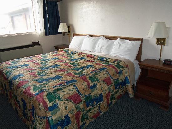 Apollo Motor Inn: loved my room