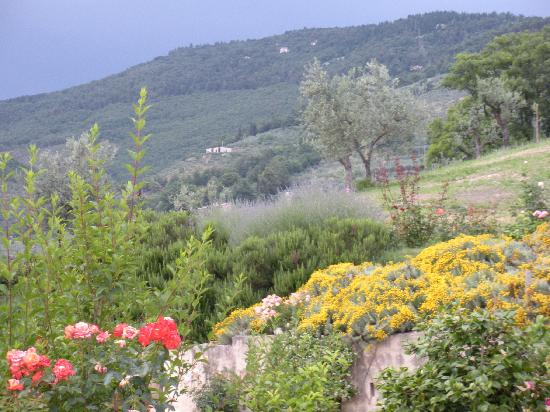 Spello, Italy: The Garden of Cuore Verde