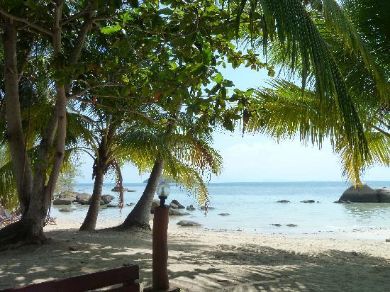 Sea Scene Resort: Depuis le petit déjeuner