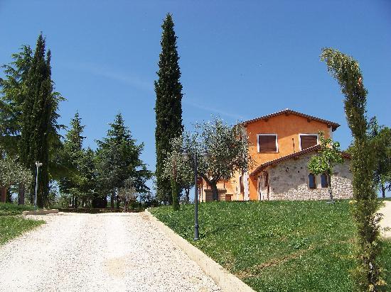 Tramonto su Assisi: Viale di ingresso e struttura
