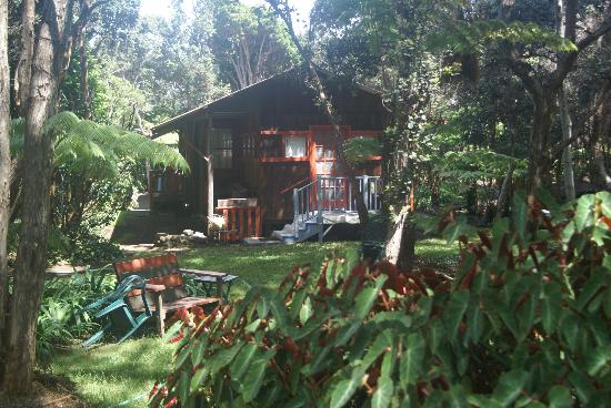 Crater Rim Cabin: CRC from the back yard