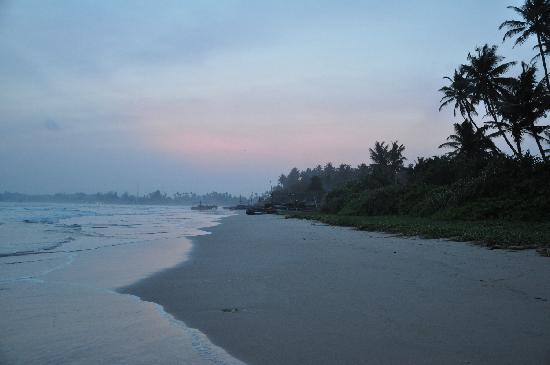 Weligama Bay Resort : Beach behind hotel