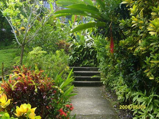 Tabulia Tree Hotel & Villas : Nuestros Jardines
