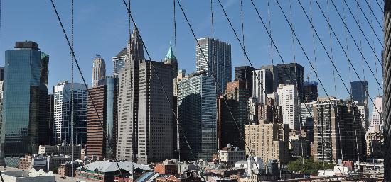 CityRover Walks NY: From the Bridge