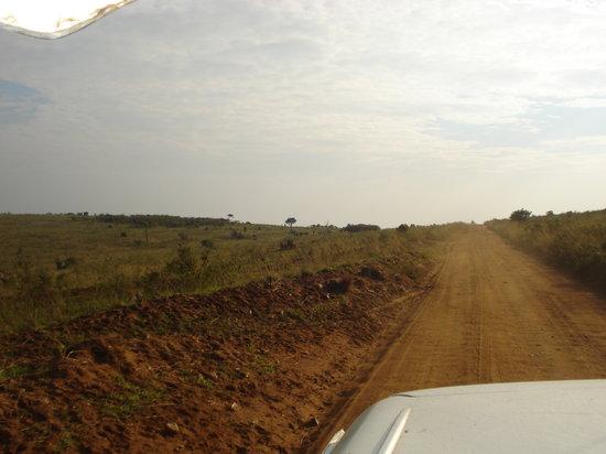 Freddy's 4X4 Jeep Safaris & Day Trips Nairobi: Safari