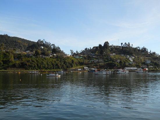 Valdivia, Cile: Camino a Amargos vista desde el muelle