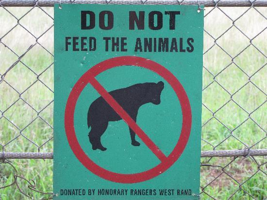 Crocodile Bridge Rest Camp: Do not feed the animals!