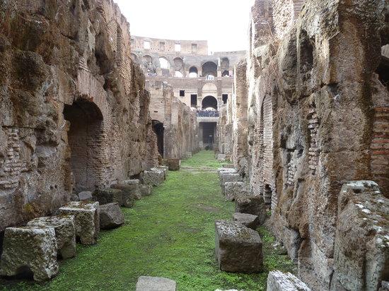New Rome Free Tour: Under the Coliseum