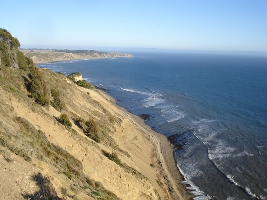 California Nature Tours - Day Tours