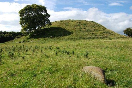 Bru na Boinne : Mound at Dowth