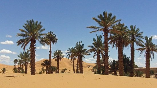 Marvelous Morocco Tours: Morocco Tours\ Tours in Morocco\ Morocco Travel Company