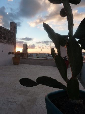 "B&B Intramuros : Terrace ""ESSE"""