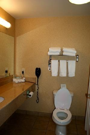 Country Inn & Suites By Carlson, Sioux Falls: bathroom