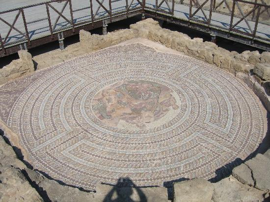 Kato Paphos Archaeological Park: One of the mosaics