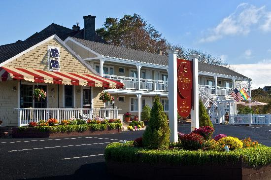 Foxberry Inn : A Beautiful Day at the Fox