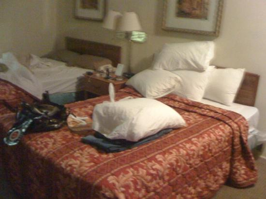 Knights Inn San Antonio Near AT&T Center: full size beds not bad...