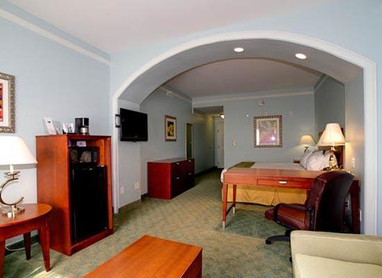Holiday Inn Express Tampa North - Telecom Park: Executive King Suite