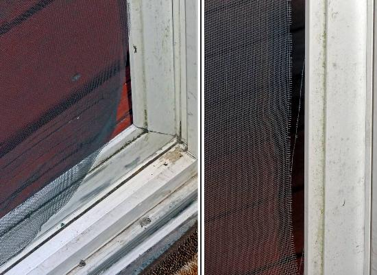 Agate Beach Motel: Living room screen door need replacing