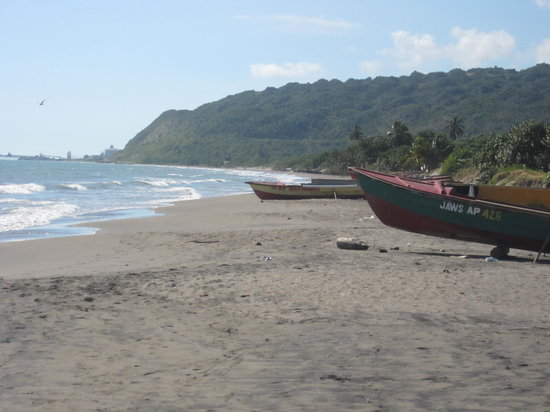 Sephy's Sunshine Tours: To Little Ochi on the South Coast for the freshest fish you can find