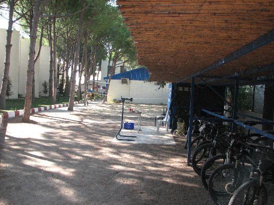 Seaside Beach Club: Cycle shed