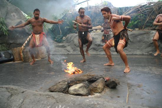 Tjapukai Aboriginal Cultural Park: Dance show