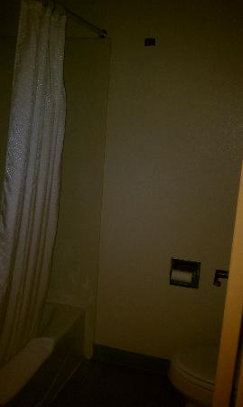 Village Inn and Suites: Closet size bathroom