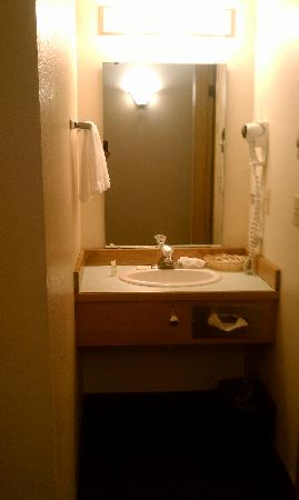 Village Inn and Suites: Vanity area