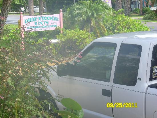 Driftwood Inn: Driftwood sign and my Chevy truck