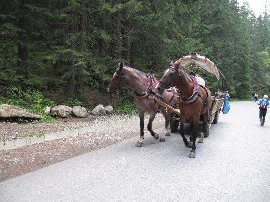 Tatra National Park, بولندا: SUBIDA CON COMODIDAD