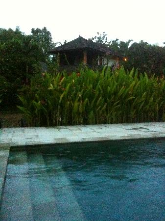 Gerebig Bungalows: View of bungalow from pool