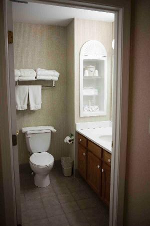 Holiday Inn Express & Suites White River Junction: Bathroom