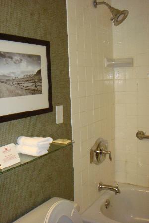 Crowne Plaza Billings: Shower