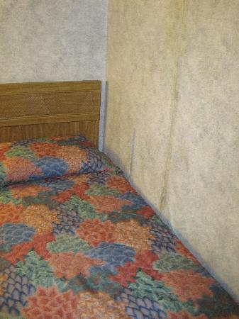 Budget Inn Canajoharie: Taped wall paper