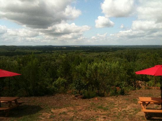 New York Texas Zipline Adventures: One of the beautiful views!!