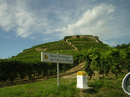 Larnage, Frankreich: On the tourist route through vineyards