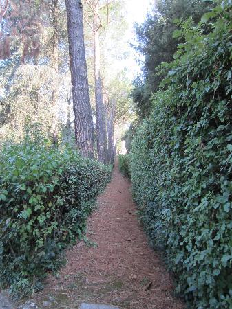 Hotel Garden: Walking path at hotel