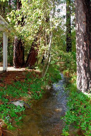 Ranchito Motel: The babbling brook that runs through the grounds
