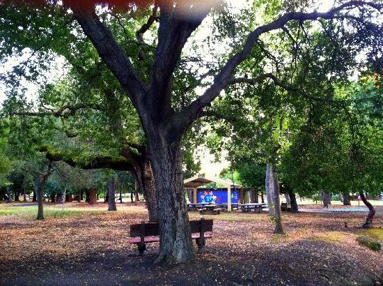 Overfelt Gardens: Go viist, you'll love it.