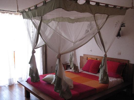 Island Continent Hotel: chambre rez de chaussée